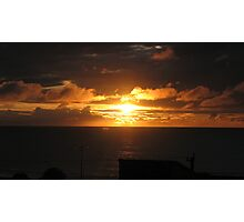 Do Do Do looking out my back door! Photographic Print