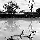 River debris by Victor Pugatschew