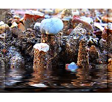 Minature Flood.... Photographic Print