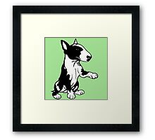 Coloured English Bull Terrier  Framed Print