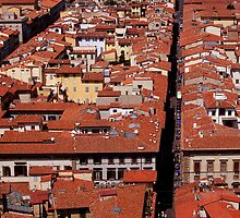 Florence from on top of the Duomo by phirephly
