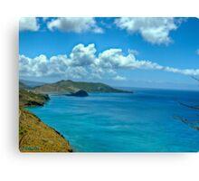 Caribbean View Canvas Print
