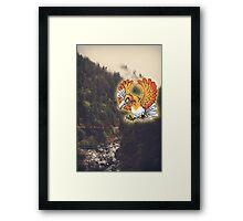 Shiny Ho-oh Framed Print