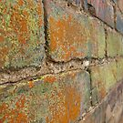 Multi-Colored Brick by kaylarenee