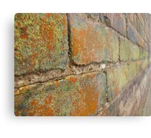 Multi-Colored Brick Metal Print