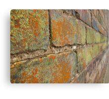 Multi-Colored Brick Canvas Print