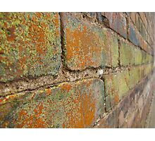 Multi-Colored Brick Photographic Print