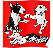 English Bull Terrier Family  Poster