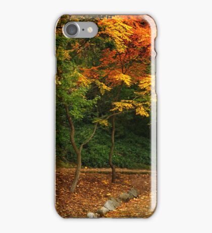 Lamp Post On An Autumn Path iPhone Case/Skin