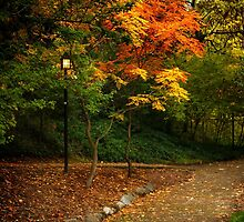 Lamp Post On An Autumn Path by James Eddy