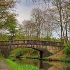 Canal Bridge by Tom Gomez