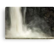 Iguazu Falls - The Power of Nature Canvas Print
