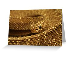 Sioux Snake Greeting Card