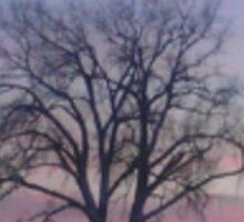 Large Trees Winter Snow Pink Sky Sunset Sticker
