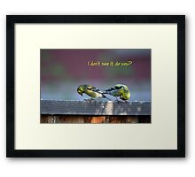 Goldfinch Bow Framed Print