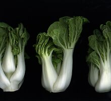 Bok Choy by Christian Slanec   FineArt Studio