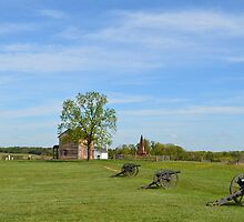 Historic Henry House and Cannons by lookherelucy