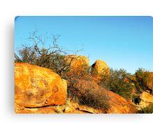 The Granites,,Mt Magnet Canvas Print