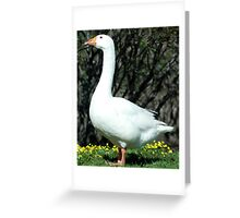 Hot Shot Greeting Card