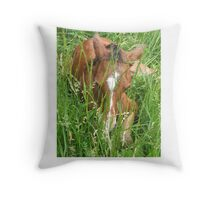 Mornings Suprise Throw Pillow