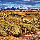Snow Covered Peaks in the McDowell Range by Roger Passman
