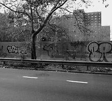 New York Street Photography 45 by Frank Romeo