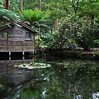 Boat House by Jeanette Varcoe.
