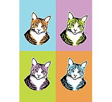 Cat Moods Photographic Print