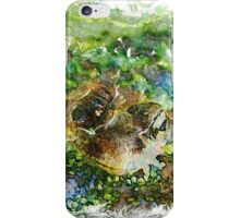 The Atlas Of Dreams - Color Plate 88 iPhone Case/Skin