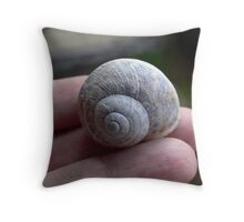 Small home Throw Pillow