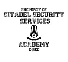 C-SEC Academy by BaDizza