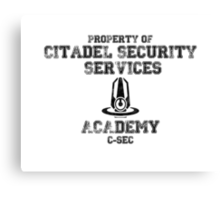 C-SEC Academy Canvas Print