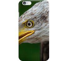 Bald Eagle Profile iPhone Case/Skin