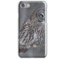 Perching Owl... iPhone Case/Skin