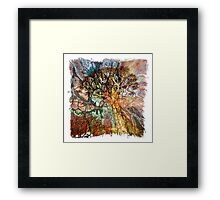 The Atlas Of Dreams - Color Plate 87 Framed Print