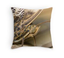 Eryphanis polyxena head Throw Pillow