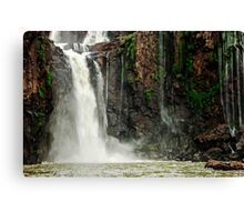 Iguazu Falls - the water falls Canvas Print