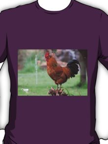 Farm talk - I can see the weekend from here! T-Shirt