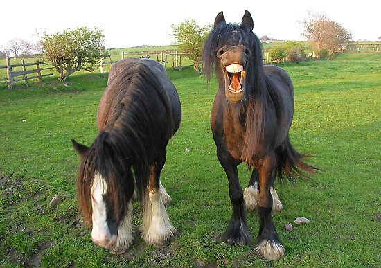 Do Something Funny! .... by Angela Harburn