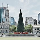 VICTORIA SQUARE-ADELAIDE by JAMES LEVETT