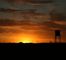 Silhouette... Free State, South Africa by Qnita