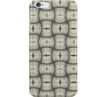 Silver Tracery iPhone Case/Skin