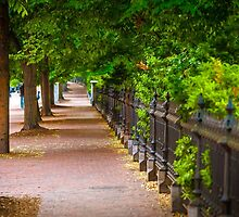 Boston Common Sidewalk by Jim Felder