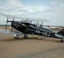 De Havilland Fox Moth @ Cunderdin 2005 by muz2142