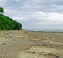 St Helens Beach, near Priory Bay by Rod Johnson