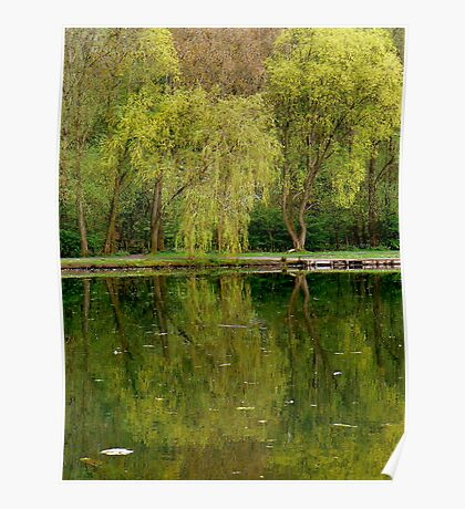 Green Reflections. Poster