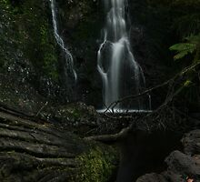 Hogarth Falls, Tasmania by dominic146