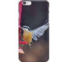 Birds in Motion III iPhone Case/Skin