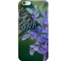 It taste as good as it smells... Free State, South Africa iPhone Case/Skin