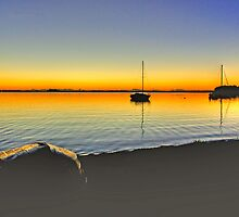 Lake Macquarie Sunrise by GailD